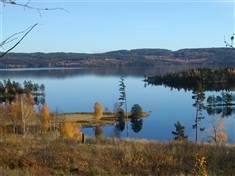 Nes, Rømskog, Fotograf: Vidar Østenby