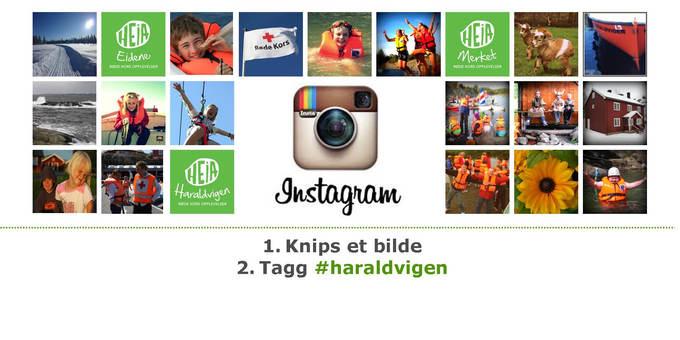 Tagg et bilde med haraldvigen på Instagram og del det med oss