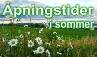 Blomster, grønn eng, Mjøsa i bakgrunnen