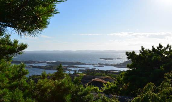 Utsikt fra Eidenetoppen