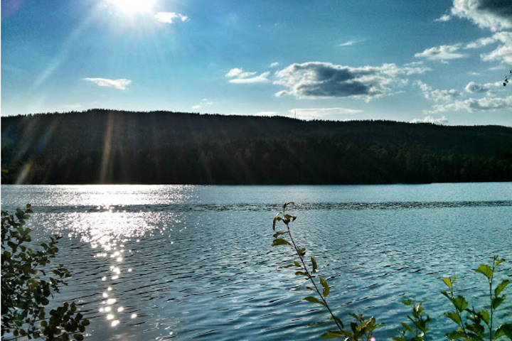Sol over Sognsvann i juli 2013