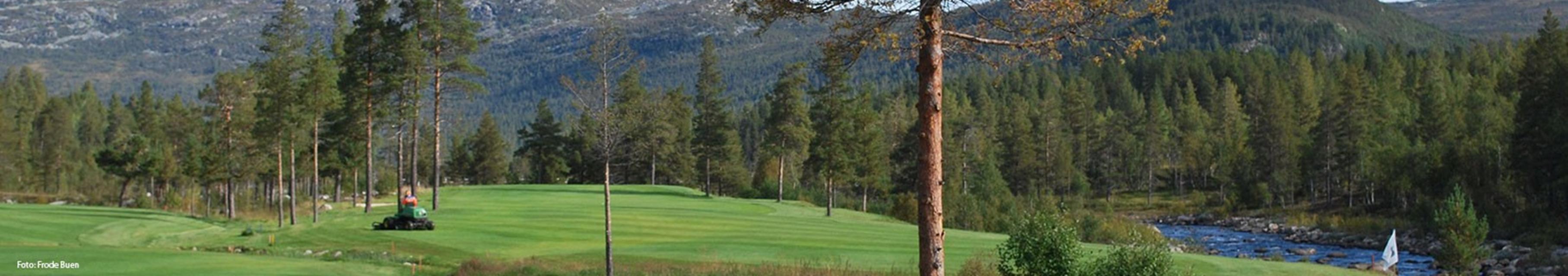 Ørnefjell golfbane hull 8