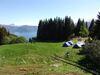 Speidarane si teltleir på Hamrestølen