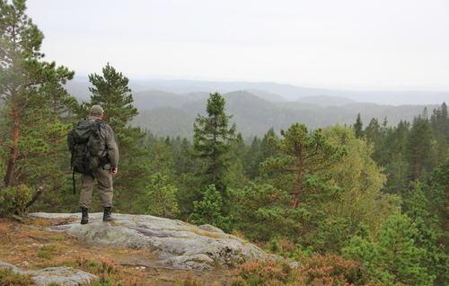 Ramstadslottet naturreservat - utsikt fra sør