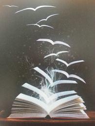 Åpen bok 1