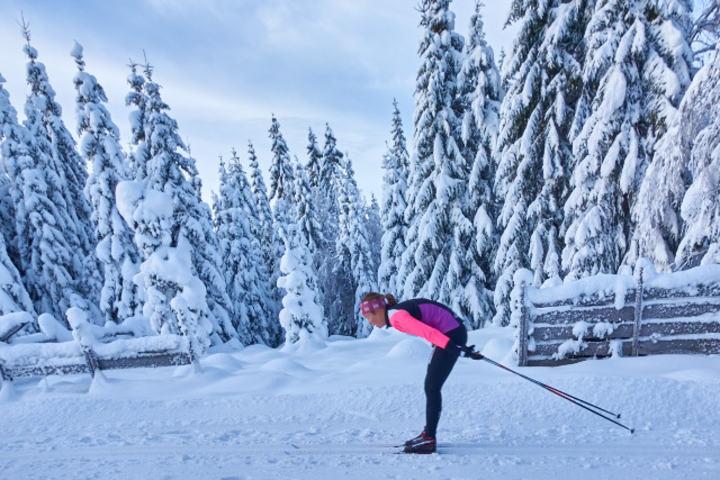 Vestergyllen et av få renn som har hatt økning i deltakelsen i år. Rennet hadde også en fantastisk eventyrramme rundt årets arrangement. Foto: Stian S. Møller