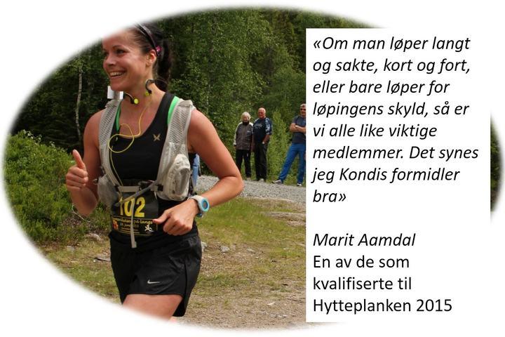 Marit_Aamdal_Hytteplanken