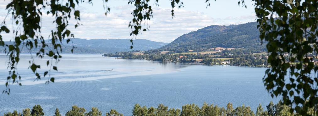 Landskapsbilde med Mjøsa i bakgrunnen.