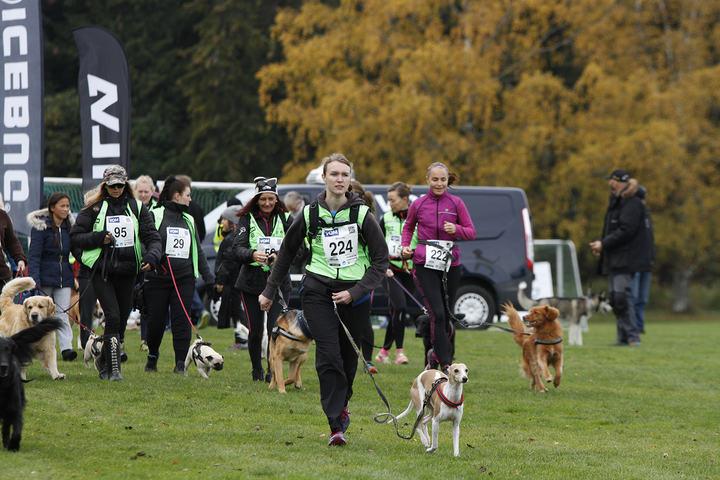 Fra fjorårets Dog Run (arrangørfoto).