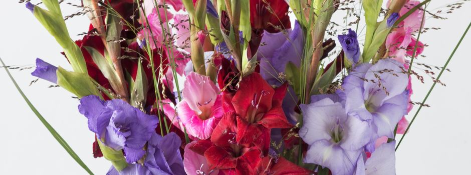 Gladioler i vase 2