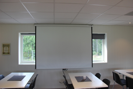 Projector-lerret