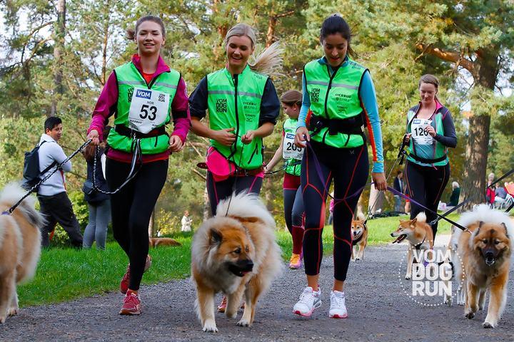 Det var flere firbente enn tobente på Ekebergsletta, selv om det her er lik fordeling (foto: Vom Dog Run).
