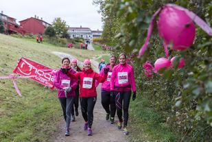 Rosa joggere langs Akerselva (foto: Stian Schløsser Møller).