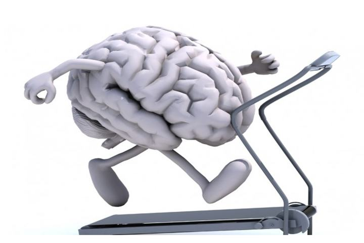 Hjerne_tredemølle3