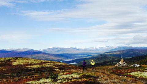 Nå ønsker forskere å finne ut hvor skadeutsatte fjelløpere er. (Foto: privat)