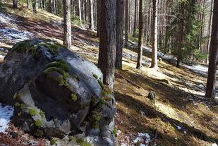 Litt snø i Furuberget en uke før sesongstart. (Foto: Stein Arne Negård)