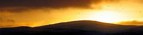 Toppbilde / sol over fjellene