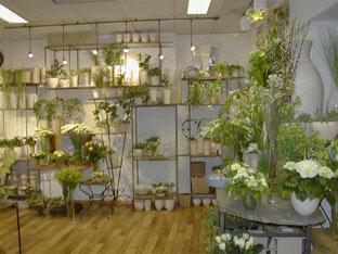 lill hos h yvik fagblomster haugesund interflora. Black Bedroom Furniture Sets. Home Design Ideas