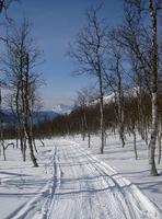 På skitur på Soløy II