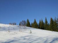Blått vinterlys i Salangen