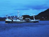 Båt i Tjeldsundet