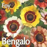 Bengalo - Foy (Etnisk Musikklubb, 2010)