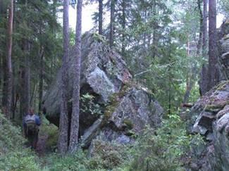 bjønnstein-høgnipen