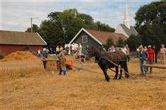 Landbruk i gamle dager.jpg