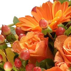 OrangeBlomster