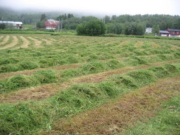 Landbruksplan høring