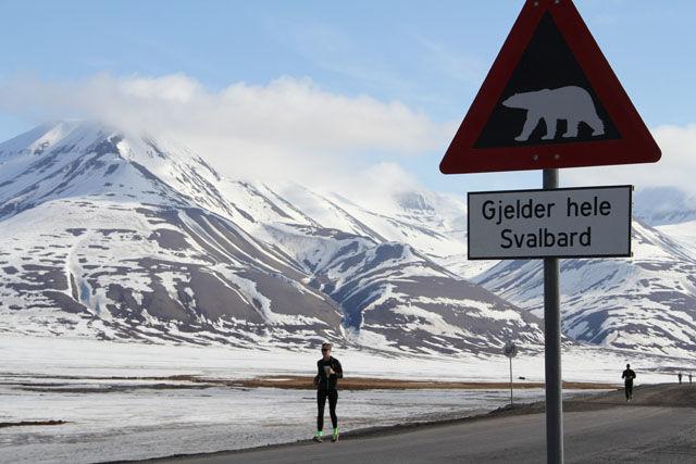 Isbjoern_paa_hele_Svalbard
