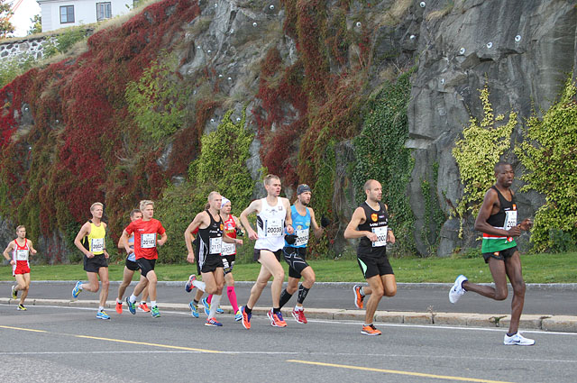 Maraton-hovedfelt_500_m_IMG_6520.jpg