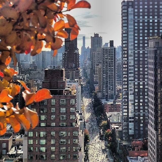 New_York_Marathon_2.jpg