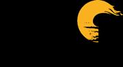 Logo der draumar blir røyndom