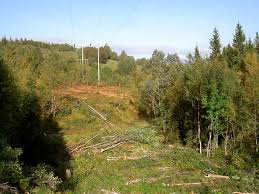 Telenor`s linjer skal ryddes i Malangen