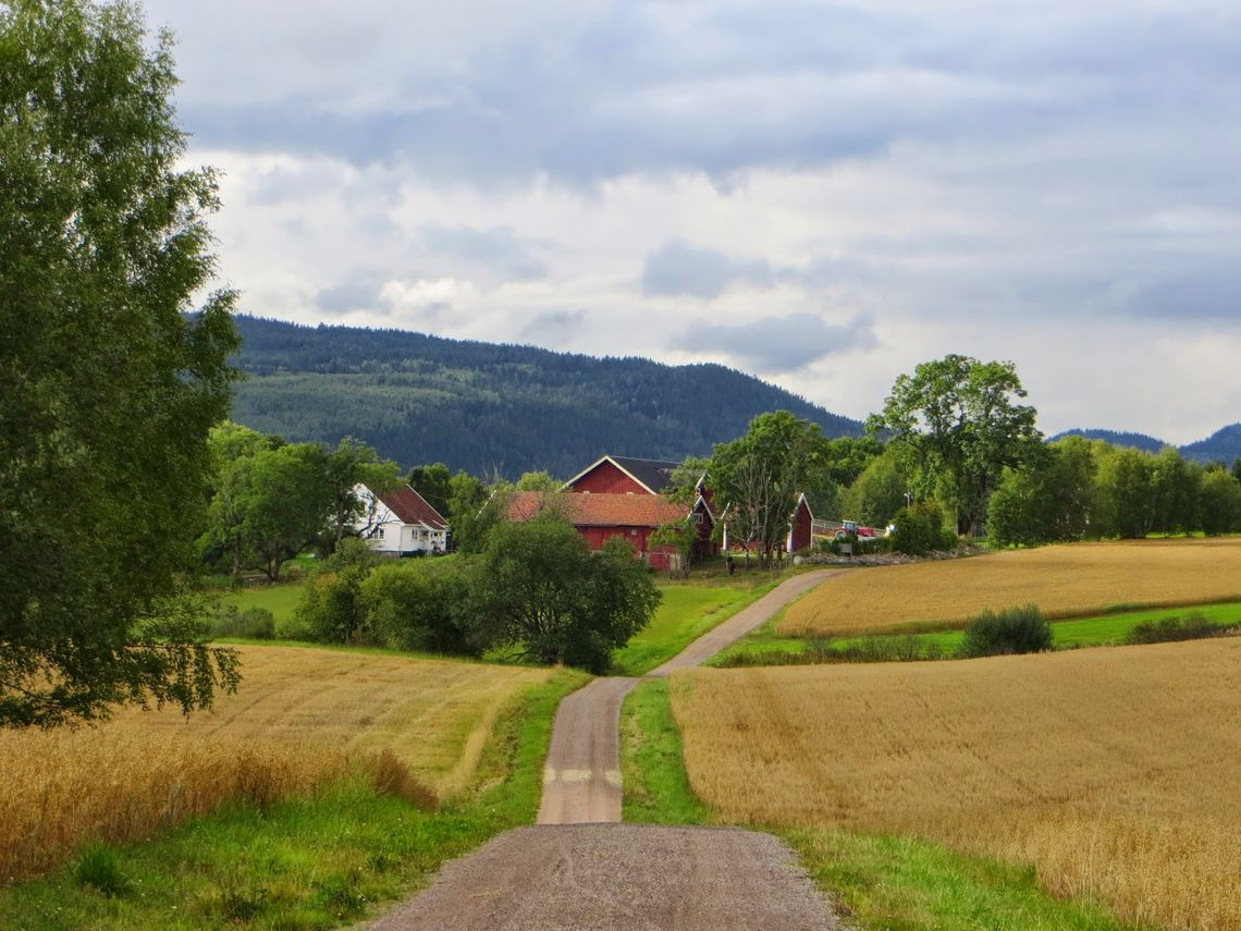 Landige omgivelser venter på EcoTrailOslo (foto: Henning Lauridsen)