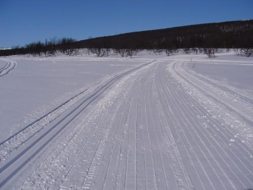 Skispor .jpg