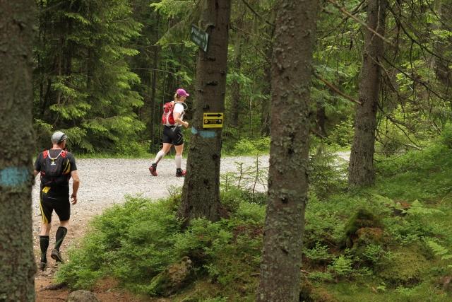 IMG_8360_ut_av_skogen.jpg