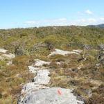 utsikt mot Flathaugen og hjortefarmen