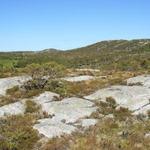 utsikt mot Storhaugen