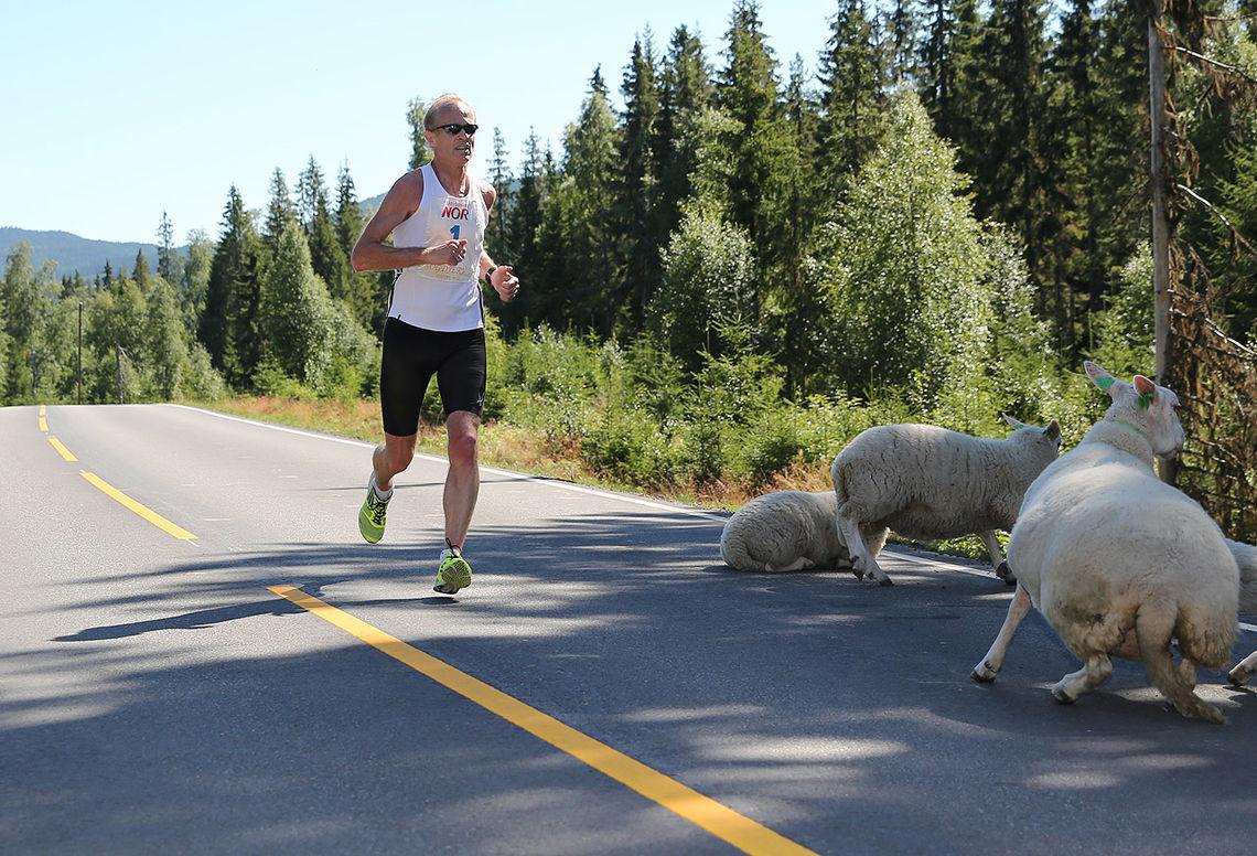 Pål Simonsen i klar ledelse ved 11 kilometer (foto: Bjørn Hytjanstorp).