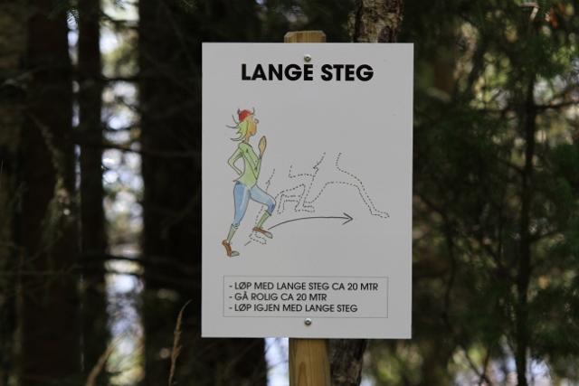 IMG_9876_Lange_steg.jpg