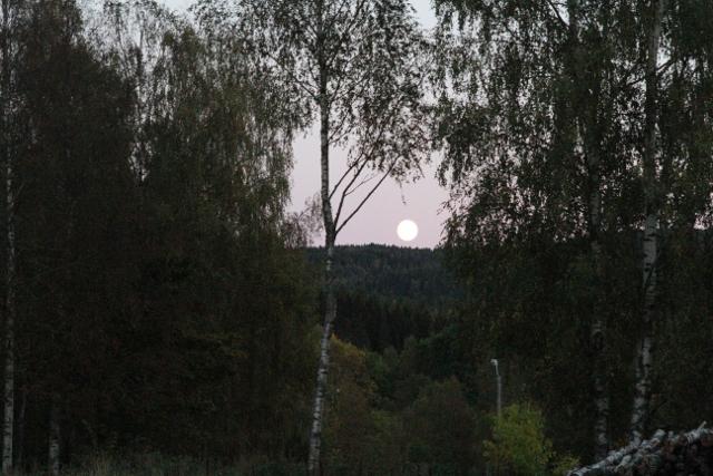 IMG_0978_fullmåne (640x427).jpg