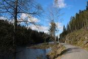 Rælingstrimmen turvei Åmotdammen
