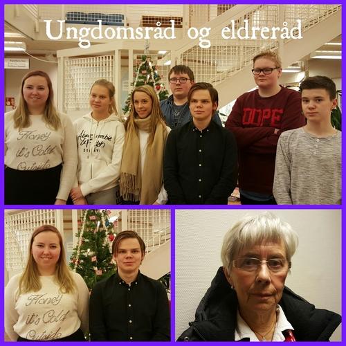Ungdomsråd og eldreråd.jpg