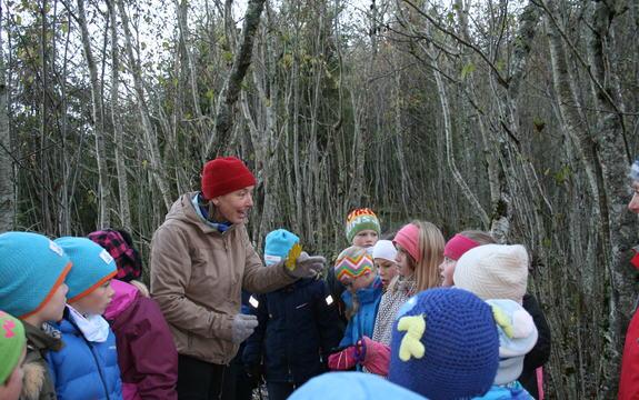 Læring om naturens kretsløp i Emilskogen