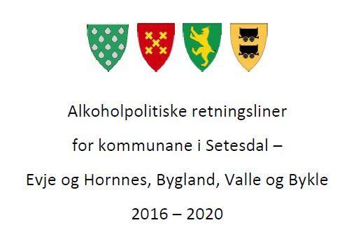 Alkoholpolitiske retningsliner 2016 - 2020