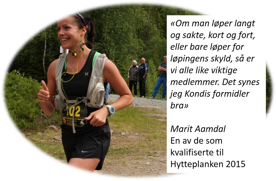 Marit_Aamdal_Hytteplanken.jpg