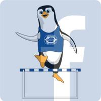 Pingvin_Facebook.jpg