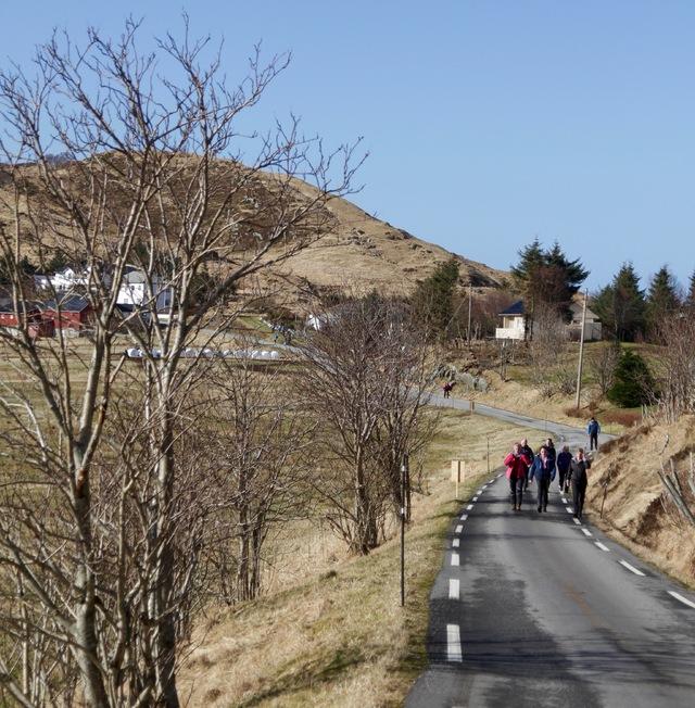 Turgaaere